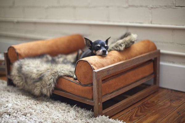 furniture-for-pets_6