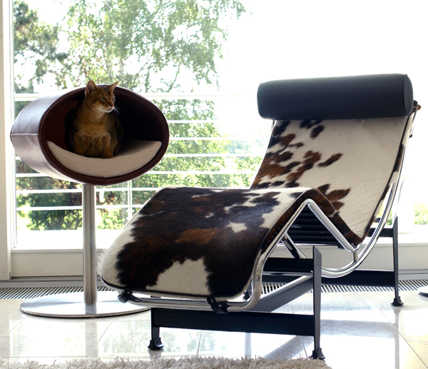 furniture-for-pets_8